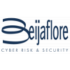 Cyber Risk & Security