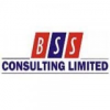 BSS Consulting