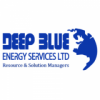 Deep Blue Energy Services Limited