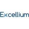 Excellium Business Limited