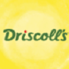 Driscoll Strawberry Associates, Inc