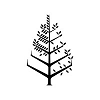 Four Seasons Hotels and Resorts