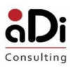ADI CONSULTING COMPANY LIMITED