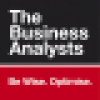 The Business Analysts