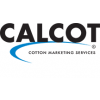 The Calcot Collection
