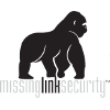 Missing Link Security