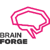 BrainForge IT Software & Consulting Sp. z o. o.