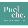 Puelche Human Consulting