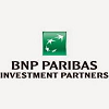 BNP Paribas Investment Partners USA Holdings, Inc.