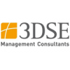 3DSE Management Consultants AT GmbH