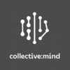 collective mind solutions GmbH