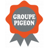 GROUPE PIGEON - Pigeon TP CIF