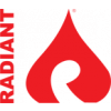 Radiant Systems Pvt Ltd